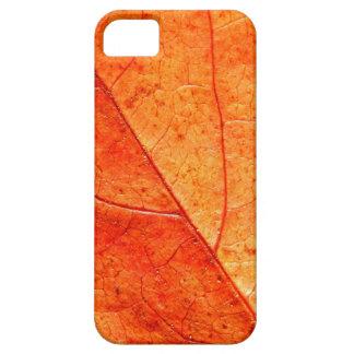 Funda Para iPhone SE/5/5s SE del iPhone del primer de la hoja del otoño+caso