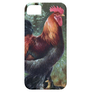 Funda Para iPhone SE/5/5s SE del iPhone + iPhone 5/5S, Barely There - gallo