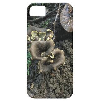 Funda Para iPhone SE/5/5s Setas florecientes