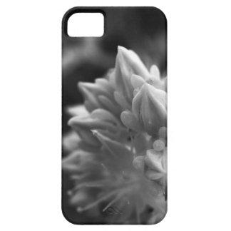 Funda Para iPhone SE/5/5s SucculentBouquet