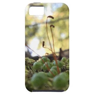 Funda Para iPhone SE/5/5s Tolerancia cubierta de musgo