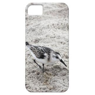 Funda Para iPhone SE/5/5s Un pájaro joven del chorlito nevado