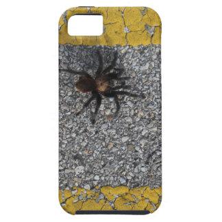 Funda Para iPhone SE/5/5s Un tarantula que cruza el camino