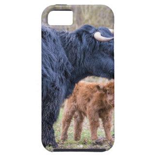 Funda Para iPhone SE/5/5s Vaca escocesa negra de la madre del montañés con