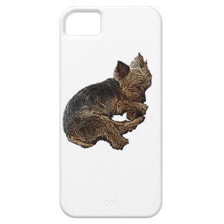 Funda Para iPhone SE/5/5s Yorkie Napping