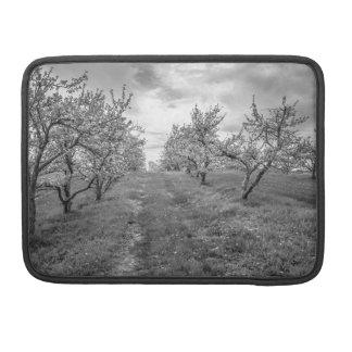 Funda Para MacBook Manzanar En primavera