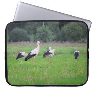 Funda Para Ordenador Cigüeñas blancas de la migración, ciconia, en un