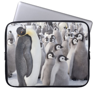 Funda Para Ordenador Pingüino de emperador con los polluelos - caja del