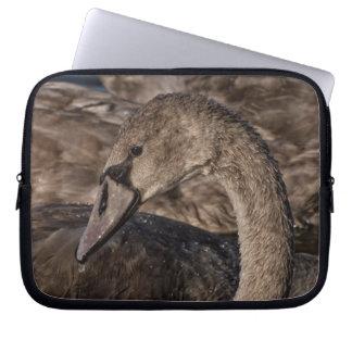 Funda Para Ordenador Pollo del cisne del cisne mudo