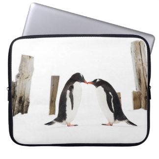 Funda Para Portátil Besando pingüinos en la Antártida - caja del