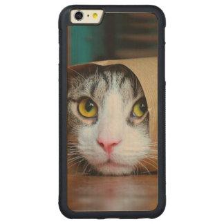 Funda Protectora De Arce Para iPhone 6 Plus De Car Gato de papel - gatos divertidos - meme del gato -