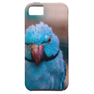 Funda protectora del iPhone del pájaro