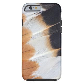 Funda Resistente iPhone 6 Extracto septentrional de la pluma de la avefría