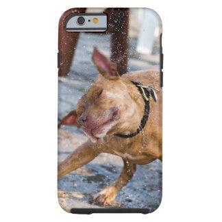 Funda Resistente iPhone 6 ¡Sacudida!