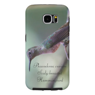 Funda Samsung Galaxy S6 Colibrí Escamoso-breasted