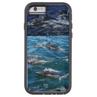 Funda Tough Xtreme iPhone 6 Para el amor de delfínes