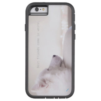 Funda Tough Xtreme iPhone 6 Perro del samoyedo, caso duro del iPhone 6/6s