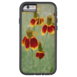 Funda Tough Xtreme iPhone 6 Wildflowers de Tejas del gorra mexicano