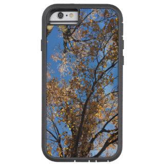 Funda Tough Xtreme Para iPhone 6 Caja del teléfono de los árboles de la caída