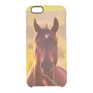 Funda Transparente Para iPhone 6/6s colección del caballo. otoño