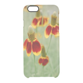 Funda Transparente Para iPhone 6/6s Wildflowers de Tejas del gorra mexicano