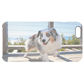 Funda Transparente Para iPhone 6 Plus Bennett - mini australiano - Rosie - playa de
