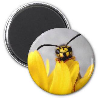 Funny Wasp Button Imán Redondo 5 Cm