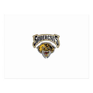 Fútbol y alegría de la juventud de Sabercats Tarjetas Postales
