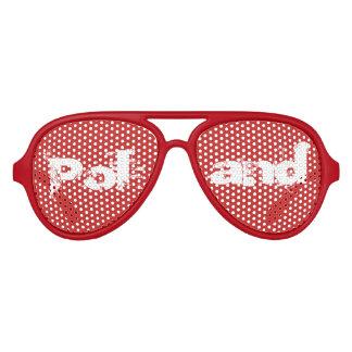 Gafas De Fiesta De Aviador Vidrios polacos de la moda