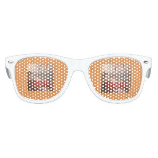 gafas de sol craycray de Harrison