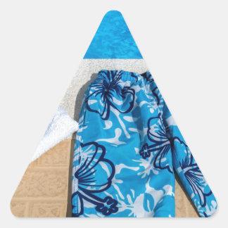 Gafas y toalla de los troncos de natación en la pegatina triangular