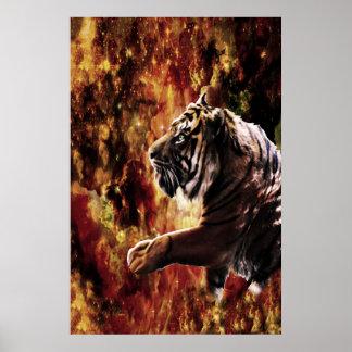 Galaxia del tigre póster
