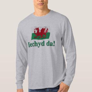 Galés Iechyd DA (alegrías!) Camiseta