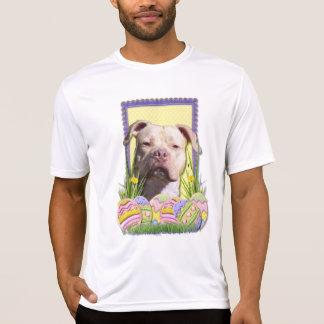 Galletas del huevo de Pascua - Pitbull - JerseyGir Camisetas