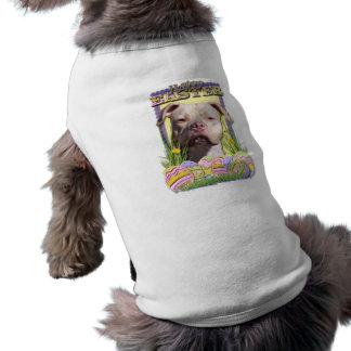 Galletas del huevo de Pascua - Pitbull - JerseyGir Camisetas Mascota
