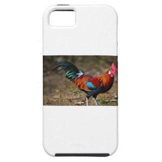 Gallo de la Leghorn de Brown Funda Para iPhone SE/5/5s