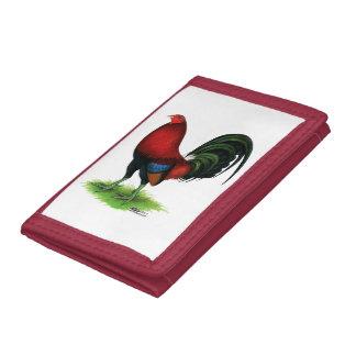 Gallo de pelea:  Rojo oscuro