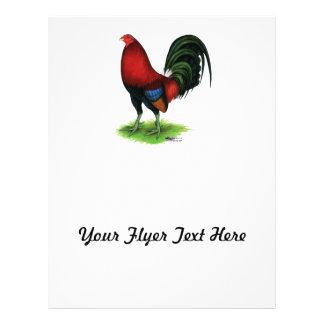 Gallo de pelea:  Rojo oscuro Flyer