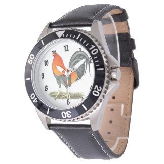 Gallo del rojo azul del gallo de pelea reloj de pulsera