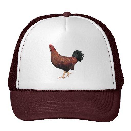 Gallo rojo gorras de camionero