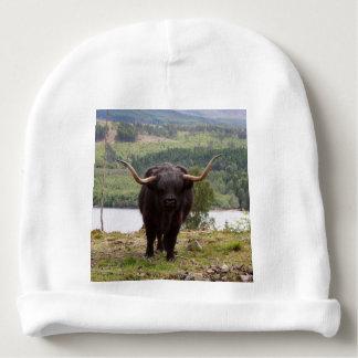 Ganado negro de la montaña, Escocia Gorrito Para Bebe