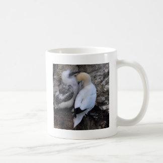 Gannet adulto con el polluelo taza clásica