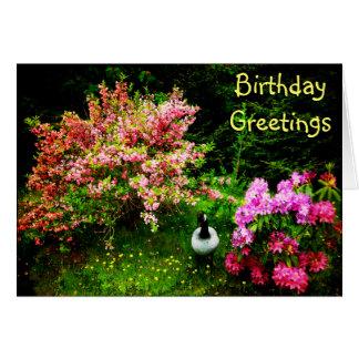 Ganso de los saludos del cumpleaños tarjeta de felicitación