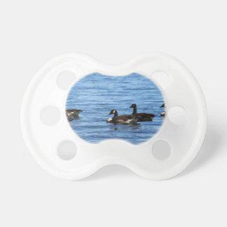 Gansos en el lago chupete