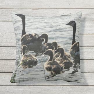 Gansos en la almohada del lago