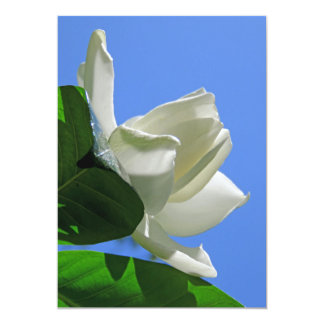 Gardenia hawaiano invitación 12,7 x 17,8 cm