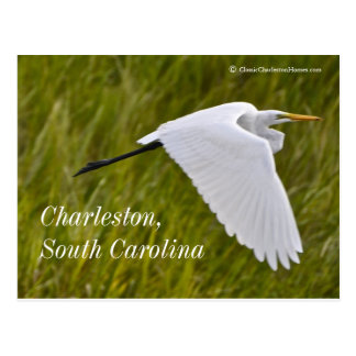 Garza de Charleston Postal