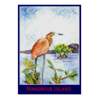 Garza de la isla del mangle póster