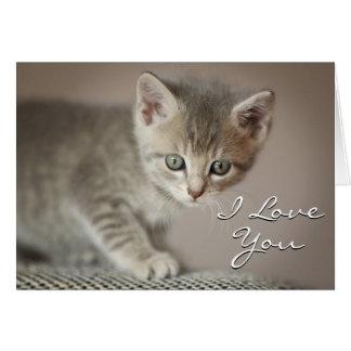 Gatito (6 semanas) tarjeta de felicitación
