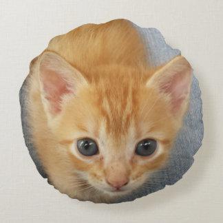 Gatito anaranjado del Tabby Cojín Redondo